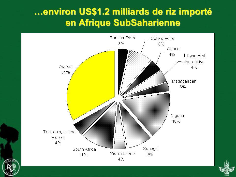 …environ US$1.2 milliards de riz importé en Afrique SubSaharienne