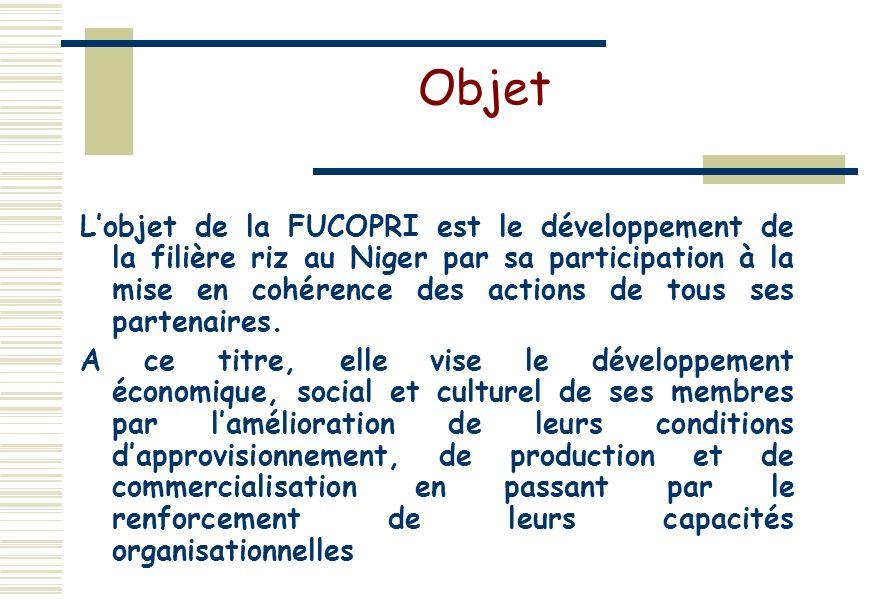 Objet Lobjet de la FUCOPRI est le développement de la filière riz au Niger par sa participation à la mise en cohérence des actions de tous ses partenaires.