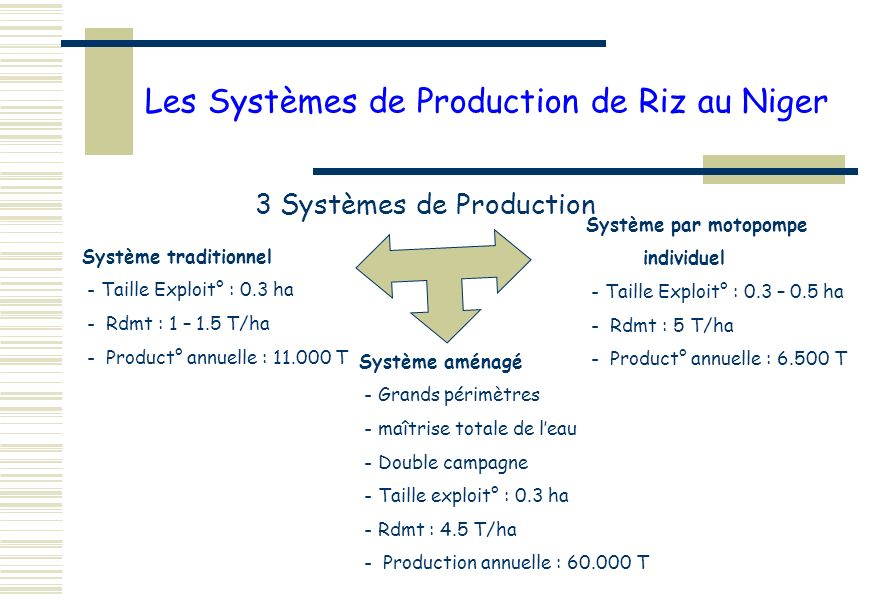 Les Systèmes de Production de Riz au Niger 3 Systèmes de Production Système traditionnel - Taille Exploit° : 0.3 ha - Rdmt : 1 – 1.5 T/ha - Product° annuelle : 11.000 T Système par motopompe individuel - Taille Exploit° : 0.3 – 0.5 ha - Rdmt : 5 T/ha - Product° annuelle : 6.500 T Système aménagé - Grands périmètres - maîtrise totale de leau - Double campagne - Taille exploit° : 0.3 ha - Rdmt : 4.5 T/ha - Production annuelle : 60.000 T