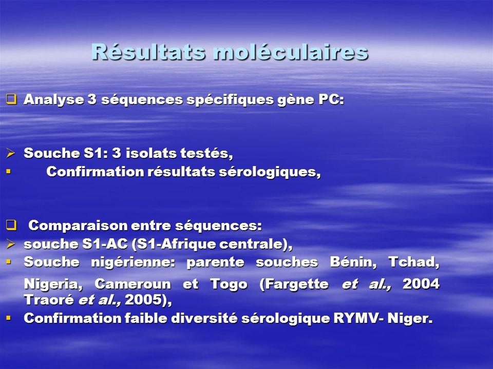 Résultats moléculaires Analyse 3 séquences spécifiques gène PC: Analyse 3 séquences spécifiques gène PC: Souche S1: 3 isolats testés, Souche S1: 3 iso