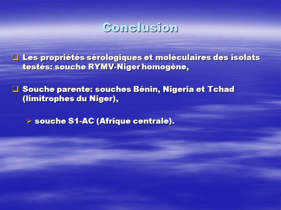 Conclusion Les propriétés sérologiques et moléculaires des isolats testés: souche RYMV-Niger homogène, Les propriétés sérologiques et moléculaires des