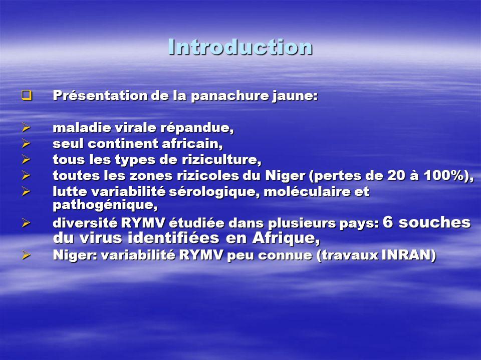 Objectifs de létude Objectifs de létude Étude variabilité sérologique et moléculaire du RYMV - Niger, Étude variabilité sérologique et moléculaire du RYMV - Niger, identification souche du virus, identification souche du virus, détermination origine et parenté phylogéniques, détermination origine et parenté phylogéniques, Connaissance étendue variabilité du RYMV au Niger.