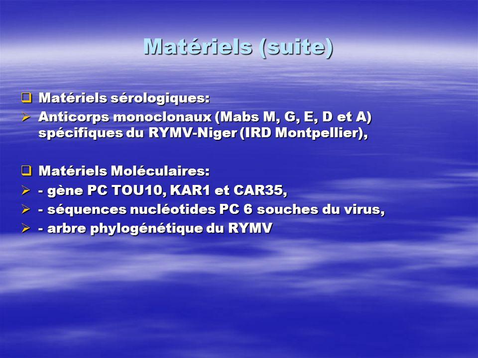 Matériels (suite) Matériels sérologiques: Matériels sérologiques: Anticorps monoclonaux (Mabs M, G, E, D et A) spécifiques du RYMV-Niger (IRD Montpell