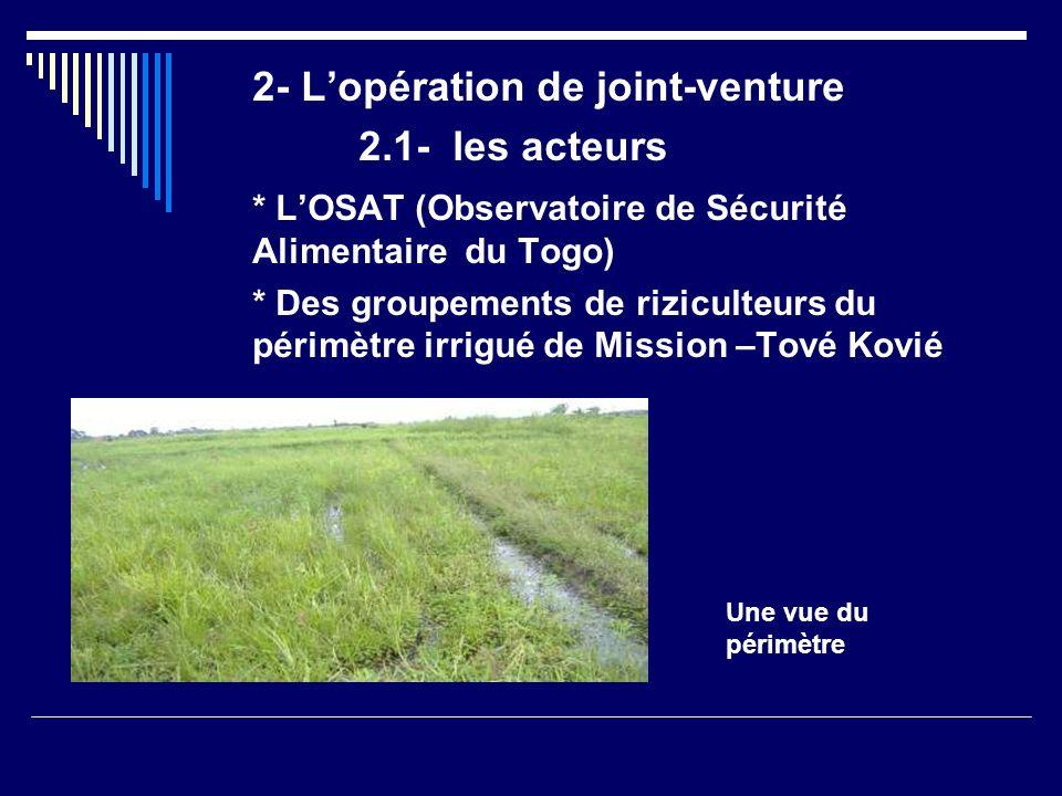 LOSAT Structure du MAEP Créé en 1997 par Décret Mission * Réguler les prix des denrées alimentaires de base * Assurer la sécurité alimentaire Organisation Direction Générale Directions Régionales