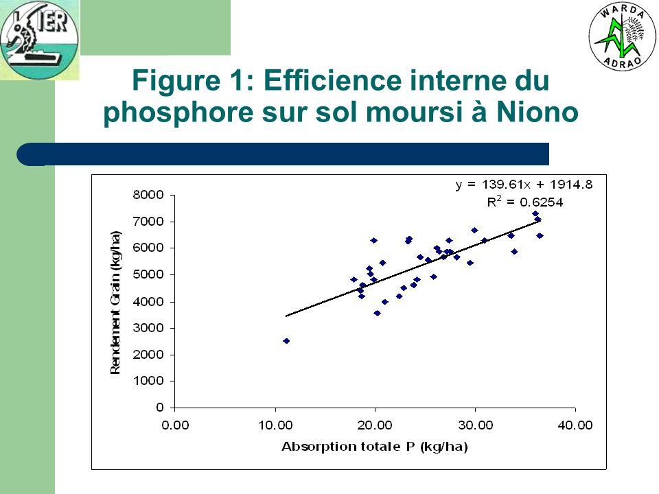 Figure 1: Efficience interne du phosphore sur sol moursi à Niono