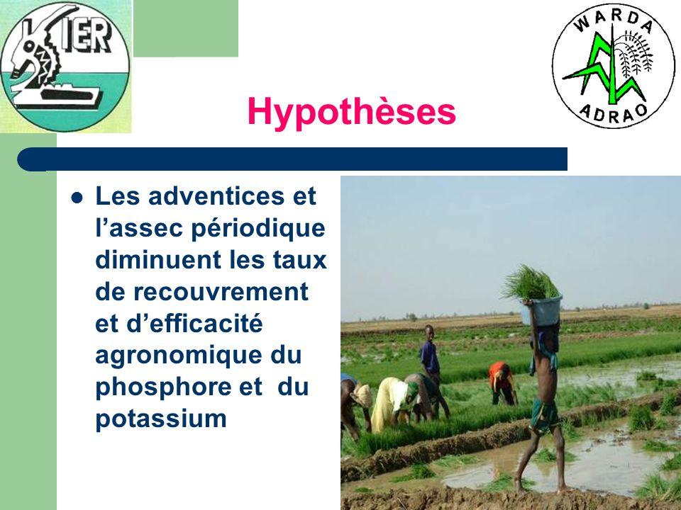 Hypothèses Les adventices et lassec périodique diminuent les taux de recouvrement et defficacité agronomique du phosphore et du potassium
