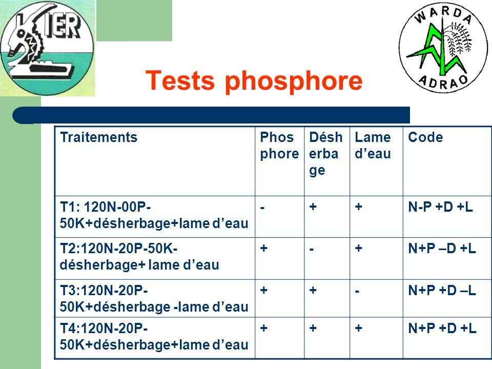 Tests phosphore TraitementsPhos phore Désh erba ge Lame deau Code T1: 120N-00P- 50K+désherbage+lame deau -++N-P +D +L T2:120N-20P-50K- désherbage+ lam
