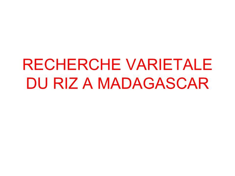 RECHERCHE VARIETALE DU RIZ A MADAGASCAR
