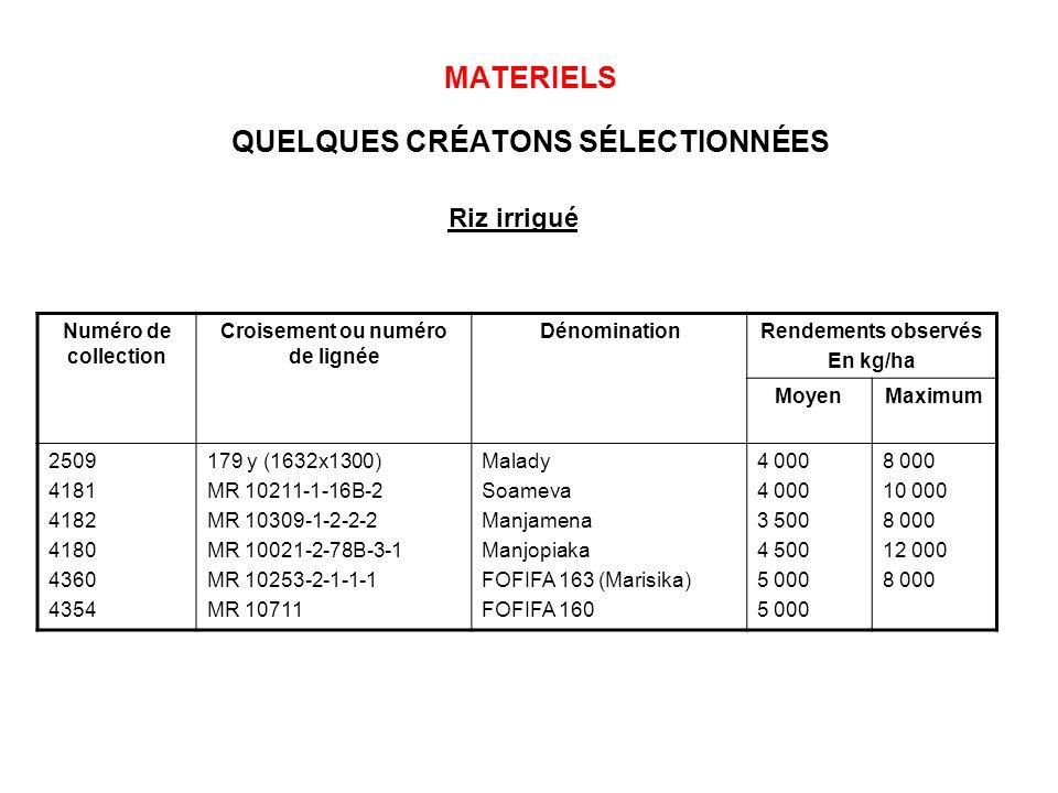 MATERIELS QUELQUES CRÉATONS SÉLECTIONNÉES Numéro de collection Croisement ou numéro de lignée DénominationRendements observés En kg/ha MoyenMaximum 25