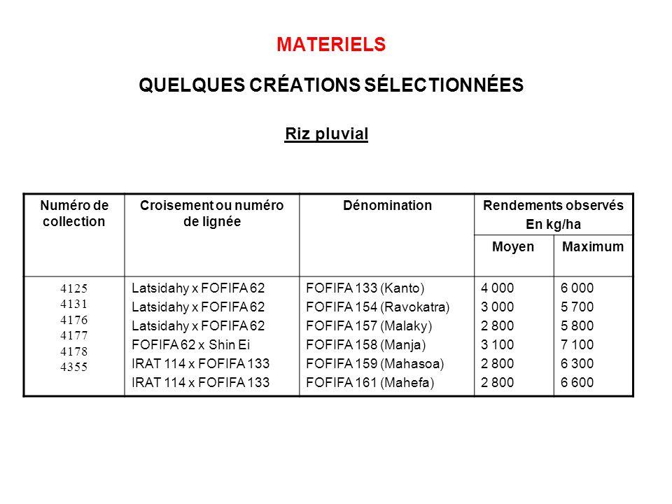 MATERIELS QUELQUES CRÉATIONS SÉLECTIONNÉES Numéro de collection Croisement ou numéro de lignée DénominationRendements observés En kg/ha MoyenMaximum 4