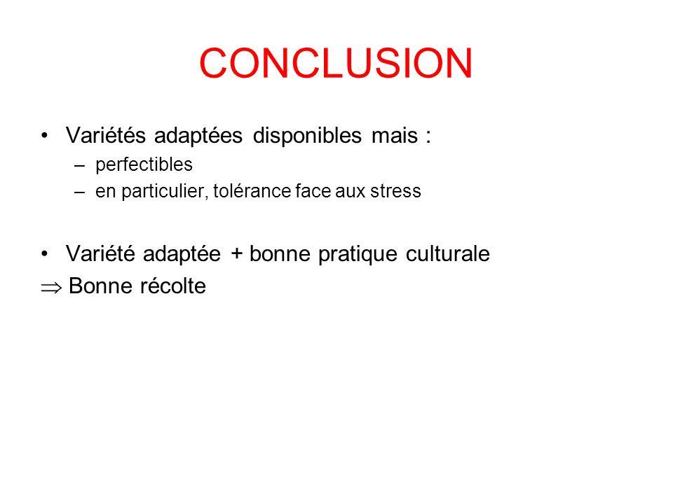 CONCLUSION Variétés adaptées disponibles mais : –perfectibles –en particulier, tolérance face aux stress Variété adaptée + bonne pratique culturale Bo