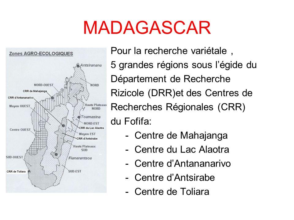 MADAGASCAR Pour la recherche variétale, 5 grandes régions sous légide du Département de Recherche Rizicole (DRR)et des Centres de Recherches Régionale