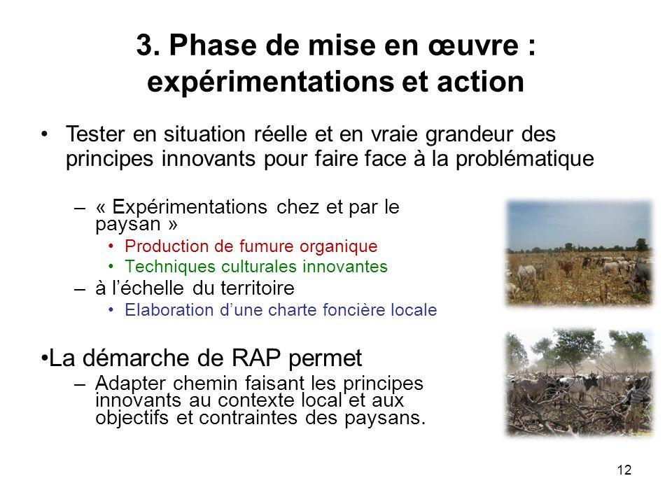 3. Phase de mise en œuvre : expérimentations et action –« Expérimentations chez et par le paysan » Production de fumure organique Techniques culturale
