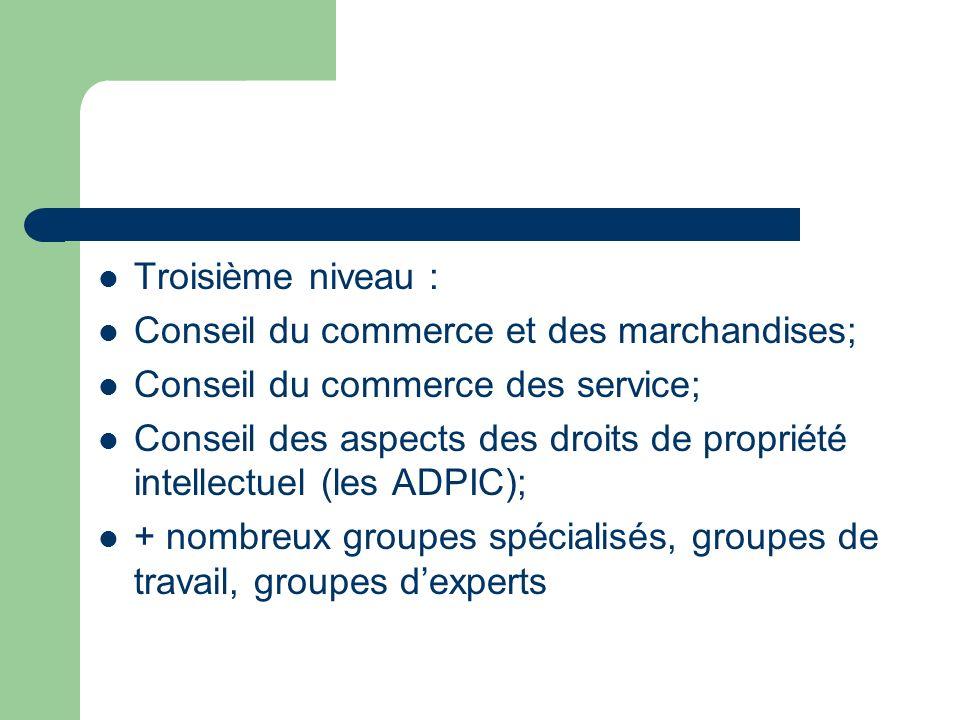 Troisième niveau : Conseil du commerce et des marchandises; Conseil du commerce des service; Conseil des aspects des droits de propriété intellectuel (les ADPIC); + nombreux groupes spécialisés, groupes de travail, groupes dexperts