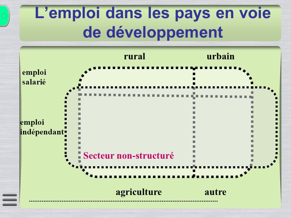 Lemploi dans les pays en voie de développement emploi salarié emploi indépendant ruralurbain agricultureautre Secteur non-structuré