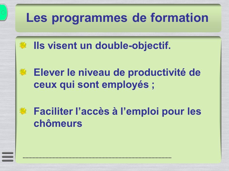 Les programmes de formation Ils visent un double-objectif. Elever le niveau de productivité de ceux qui sont employés ; Faciliter laccès à lemploi pou