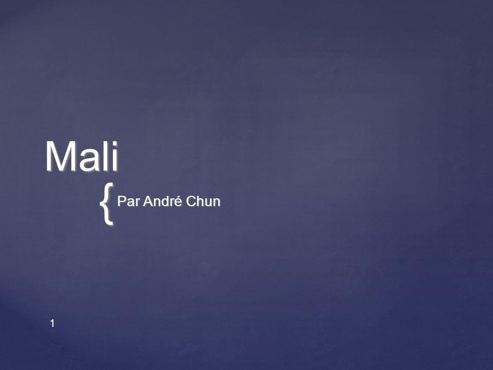 { 1Mali Par André Chun