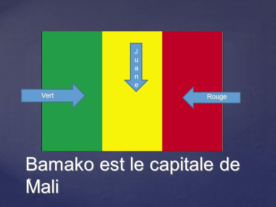 2 Bamako est le capitale de Mali Vert JuaneJuane Rouge