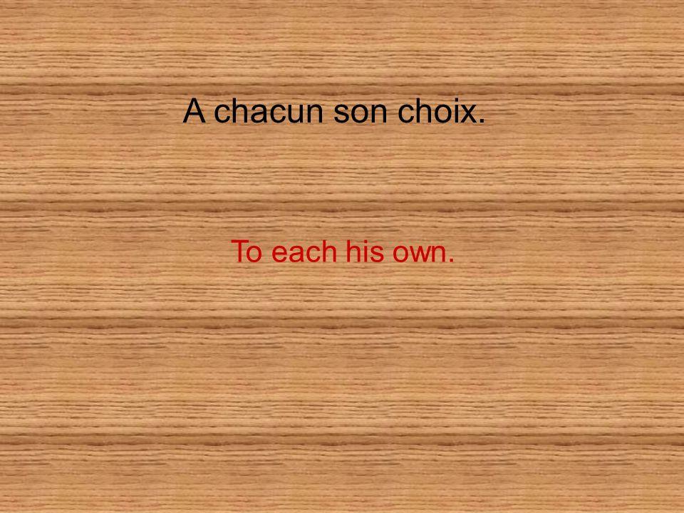 A chacun son choix. To each his own.