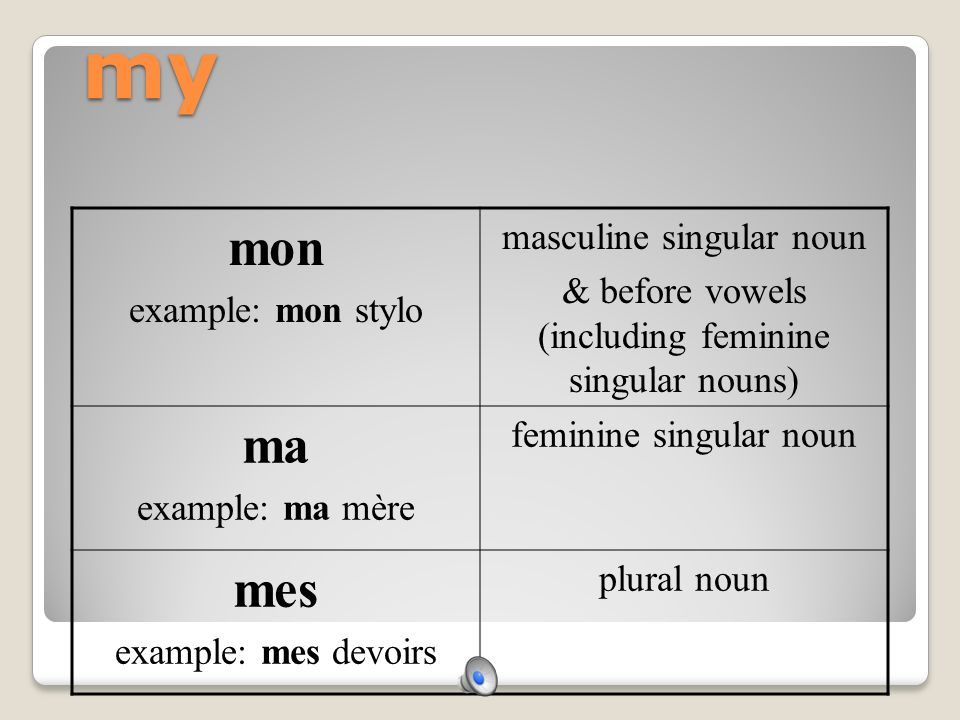 my mon example: mon stylo masculine singular noun & before vowels (including feminine singular nouns) ma example: ma mère feminine singular noun mes example: mes devoirs plural noun