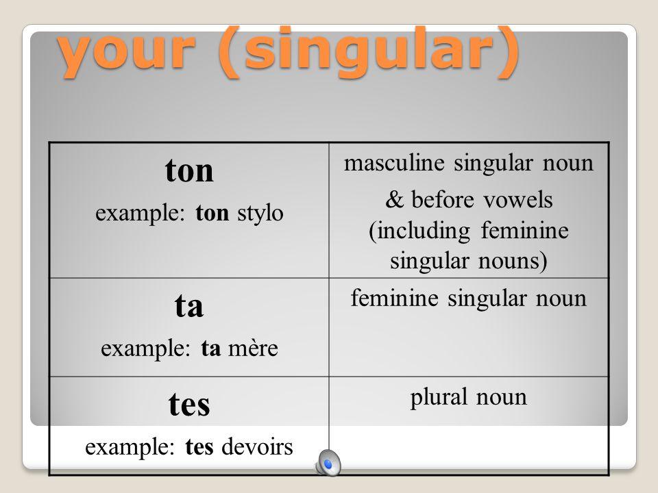 my mon example: mon stylo masculine singular noun & before vowels (including feminine singular nouns) ma example: ma mère feminine singular noun mes e