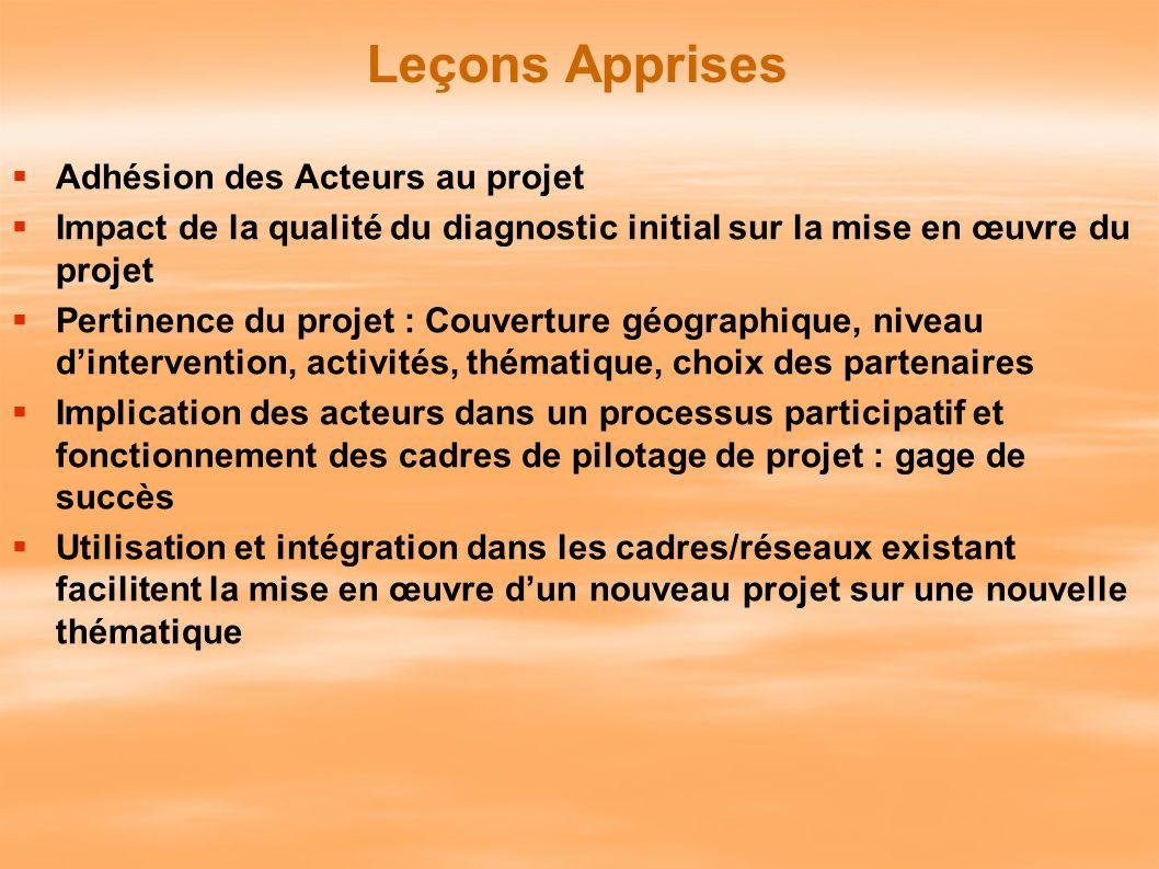 Leçons Apprises Adhésion des Acteurs au projet Impact de la qualité du diagnostic initial sur la mise en œuvre du projet Pertinence du projet : Couver