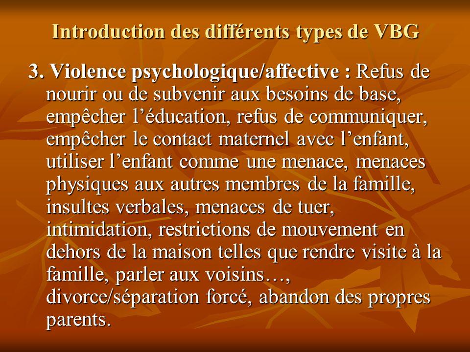 Introduction des différents types de VBG 3. Violence psychologique/affective : Refus de nourir ou de subvenir aux besoins de base, empêcher léducation