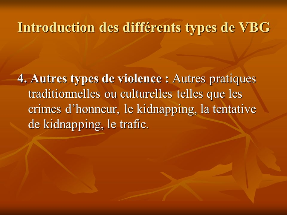 Introduction des différents types de VBG 4. Autres types de violence : Autres pratiques traditionnelles ou culturelles telles que les crimes dhonneur,