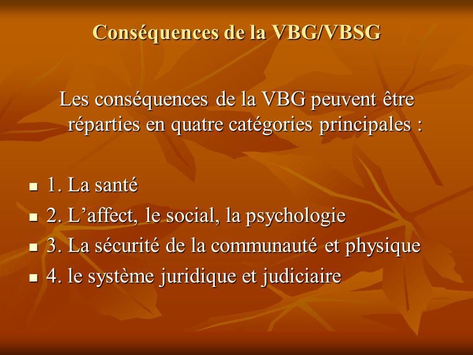Conséquences de la VBG/VBSG Les conséquences de la VBG peuvent être réparties en quatre catégories principales : 1. La santé 1. La santé 2. Laffect, l