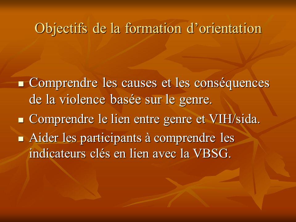Objectifs de la formation dorientation Comprendre les causes et les conséquences de la violence basée sur le genre. Comprendre les causes et les consé
