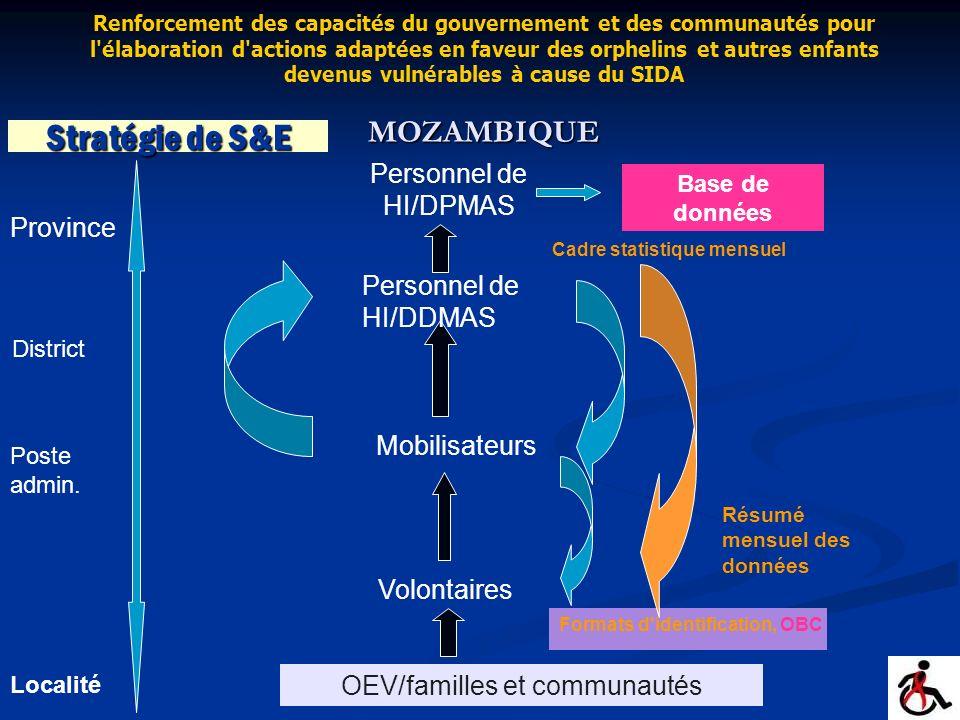 Stratégie de S&E Volontaires Mobilisateurs Personnel de HI/DDMAS Résumé mensuel des données OEV/familles et communautés Personnel de HI/DPMAS Base de