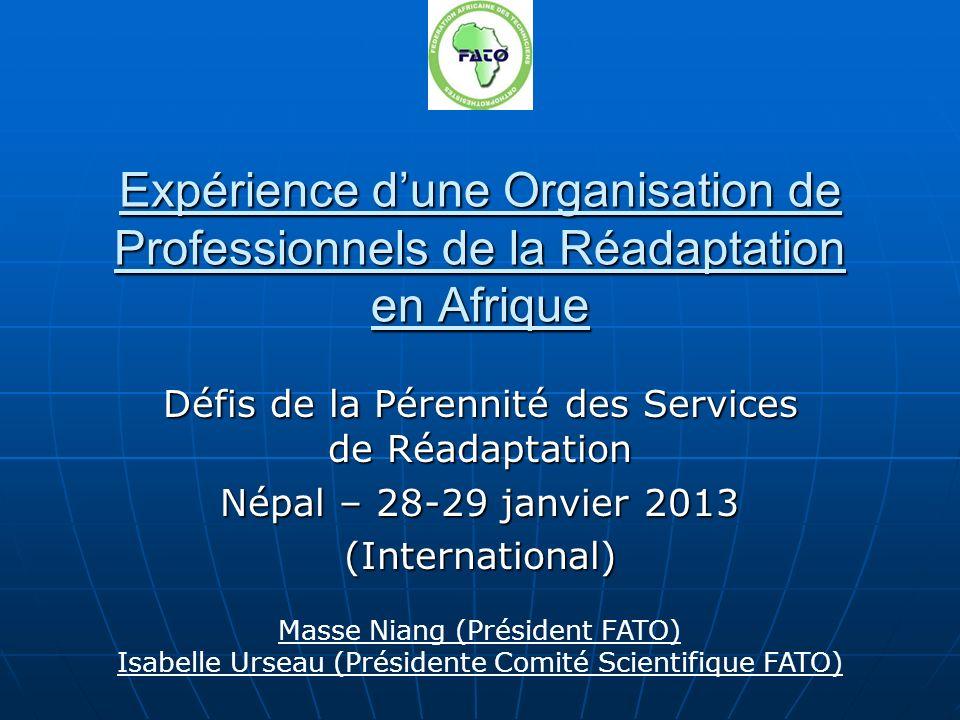 Expérience dune Organisation de Professionnels de la Réadaptation en Afrique Défis de la Pérennité des Services de Réadaptation Népal – 28-29 janvier