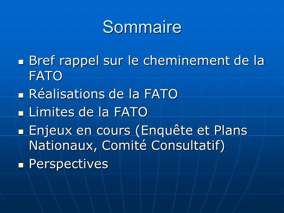 Sommaire Bref rappel sur le cheminement de la FATO Bref rappel sur le cheminement de la FATO Réalisations de la FATO Réalisations de la FATO Limites d