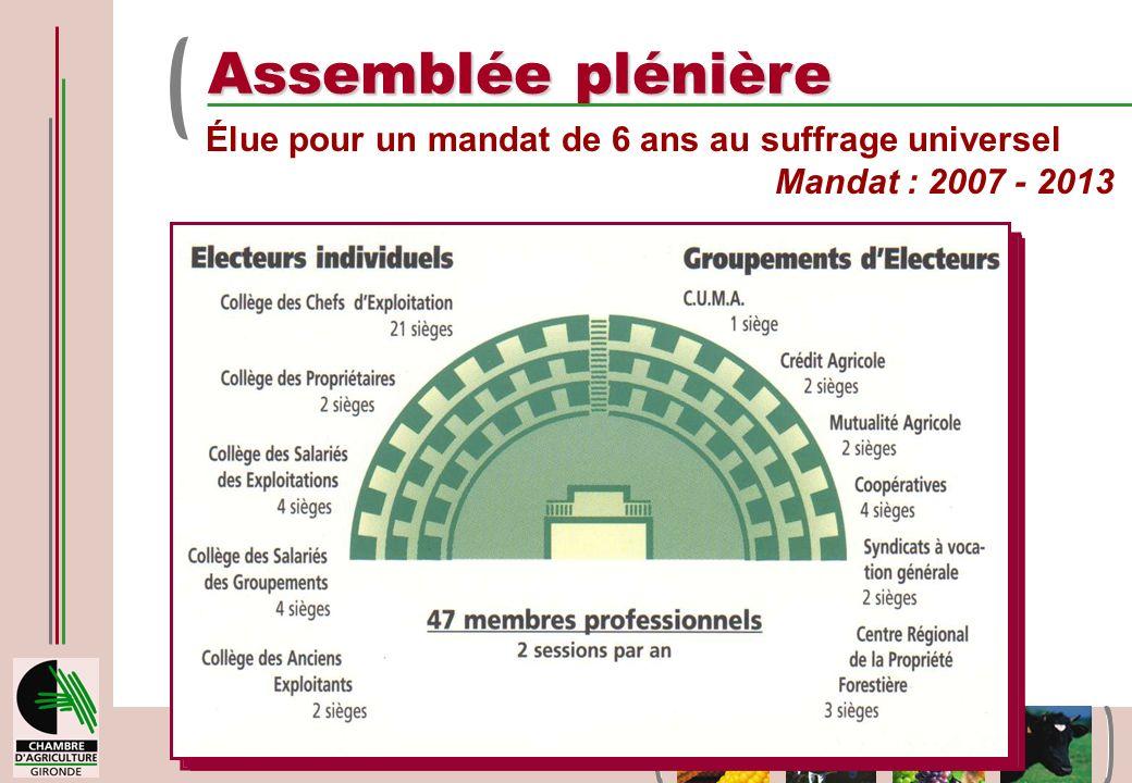 9 avril 2008 - Bordeaux Assemblée plénière Élue pour un mandat de 6 ans au suffrage universel Mandat : 2007 - 2013