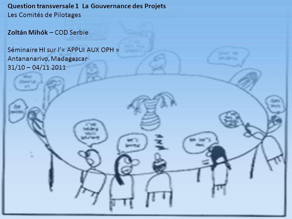 Question transversale 1 La Gouvernance des Projets Les Comités de Pilotages Zoltán Mihók – COD Serbie Séminaire HI sur l« APPUI AUX OPH » Antananarivo, Madagascar 31/10 – 04/11 2011