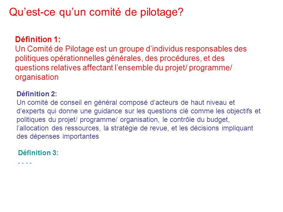 Un des aspects essentiels du management dun projet est la composition et le rôle du Comité de Pilotage: Qui en fait partie.