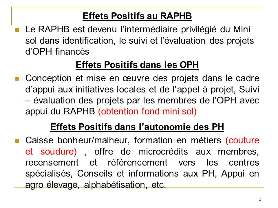 3 Effets Positifs au RAPHB Le RAPHB est devenu lintermédiaire privilégié du Mini sol dans identification, le suivi et lévaluation des projets dOPH financés Effets Positifs dans les OPH Conception et mise en œuvre des projets dans le cadre dappui aux initiatives locales et de lappel à projet, Suivi – évaluation des projets par les membres de lOPH avec appui du RAPHB (obtention fond mini sol) Effets Positifs dans lautonomie des PH Caisse bonheur/malheur, formation en métiers (couture et soudure), offre de microcrédits aux membres, recensement et référencement vers les centres spécialisés, Conseils et informations aux PH, Appui en agro élevage, alphabétisation, etc.