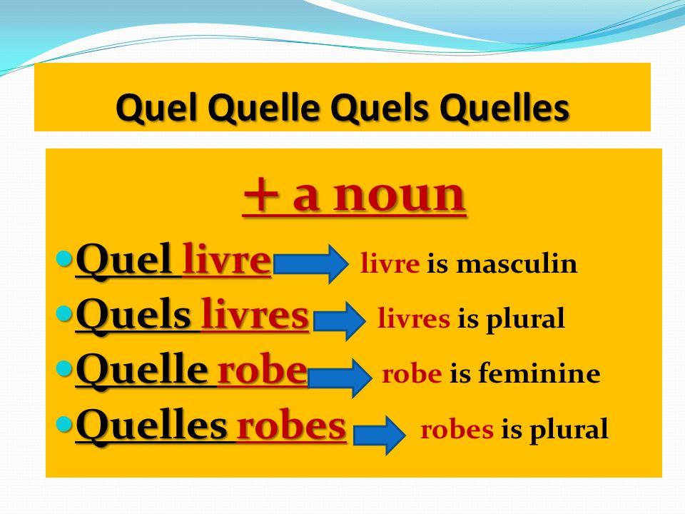 Quel Quelle Quels Quelles + a noun Quel livre Quel livre livre is masculin Quels livres Quels livres livres is plural Quelle robe Quelle robe robe is
