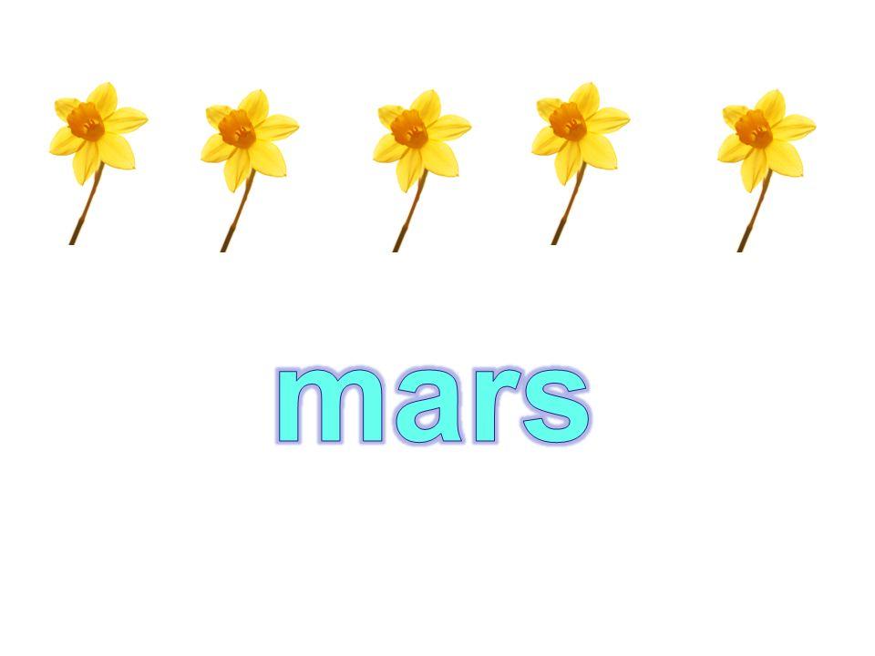 le printempslété lautomnelhiver