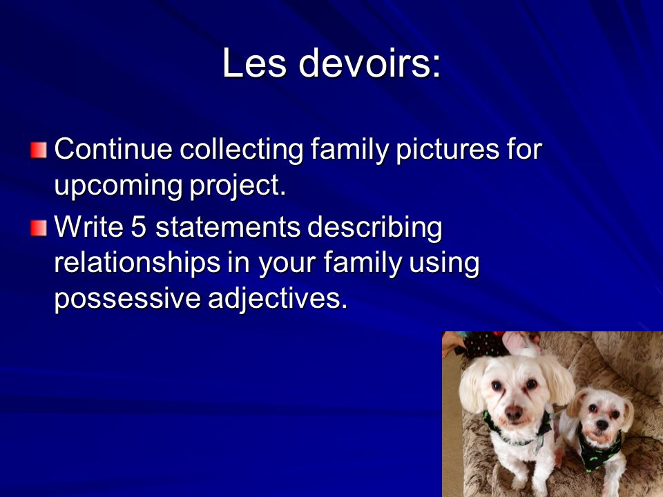Les devoirs: Continue collecting family pictures for upcoming project. Write 5 statements describing relationships in your family using possessive adj