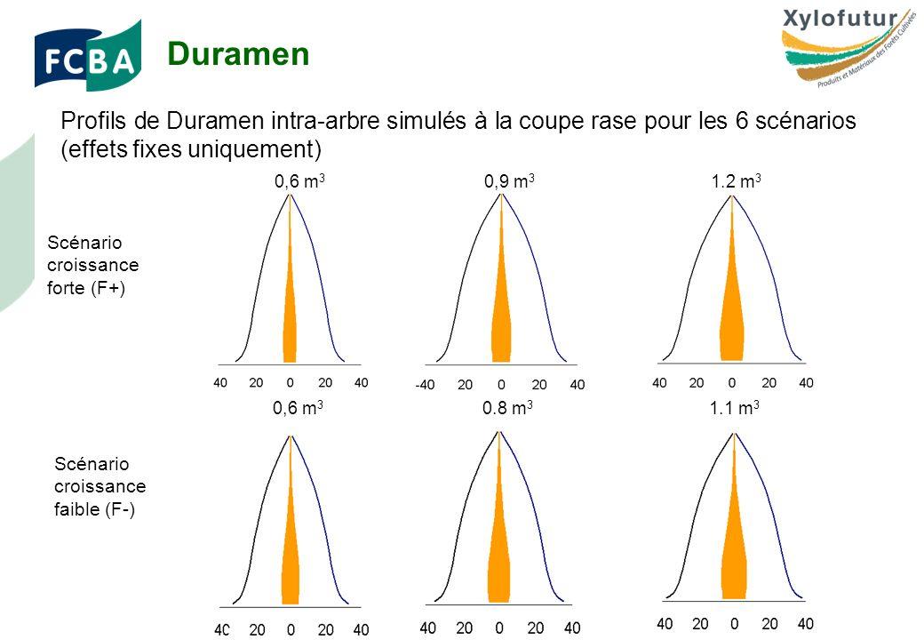 Rencontre Thèses des bois - Bordeaux - 30/01/2009 Page 15 Profils de Duramen intra-arbre simulés à la coupe rase pour les 6 scénarios (effets fixes uniquement) Duramen Scénario croissance forte (F+) Scénario croissance faible (F-) 0,6 m 3 0,9 m 3 1.2 m 3 0,6 m 3 0,8 m 3 1.1 m 3