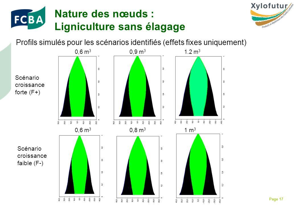 Rencontre Thèses des bois - Bordeaux - 30/01/2009 Page 17 Profils simulés pour les scénarios identifiés (effets fixes uniquement) Nature des nœuds : Ligniculture sans élagage 0,6 m 3 0,9 m 3 1.2 m 3 0,6 m 3 0,8 m 3 1 m 3 Scénario croissance forte (F+) Scénario croissance faible (F-)
