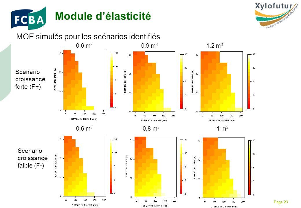 Rencontre Thèses des bois - Bordeaux - 30/01/2009 Page 23 MOE simulés pour les scénarios identifiés 0,6 m 3 0,8 m 3 1 m 3 Scénario croissance forte (F+) Scénario croissance faible (F-) Module délasticité 0,6 m 3 0,9 m 3 1.2 m 3