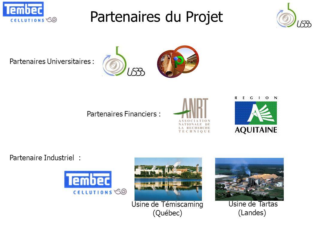 Partenaires du Projet Usine de Témiscaming (Québec) Partenaires Universitaires : Partenaires Financiers : Partenaire Industriel : Usine de Tartas (Lan