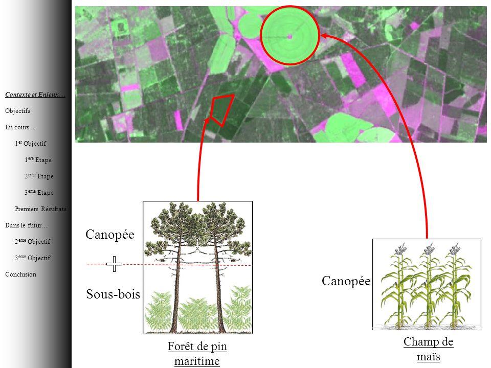 Canopée Sous-bois Canopée Forêt de pin maritime Champ de maïs Contexte et Enjeux… Objectifs En cours… 1 er Objectif 1 ere Etape 2 eme Etape 3 eme Etap