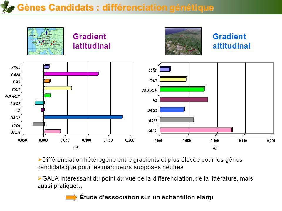 Gradient altitudinal Gradient latitudinal Gènes Candidats : différenciation génétique Différenciation hétérogène entre gradients et plus élevée pour l