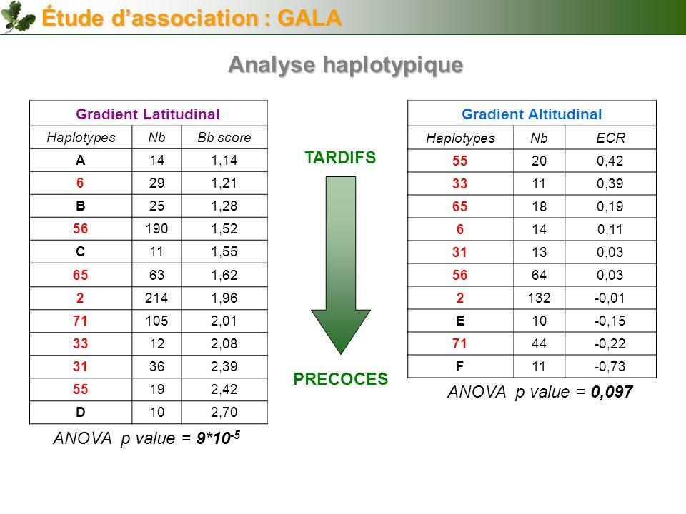 Gradient Latitudinal HaplotypesNbBb score A141,14 6291,21 B251,28 561901,52 C111,55 65631,62 22141,96 711052,01 33122,08 31362,39 55192,42 D102,70 Gra