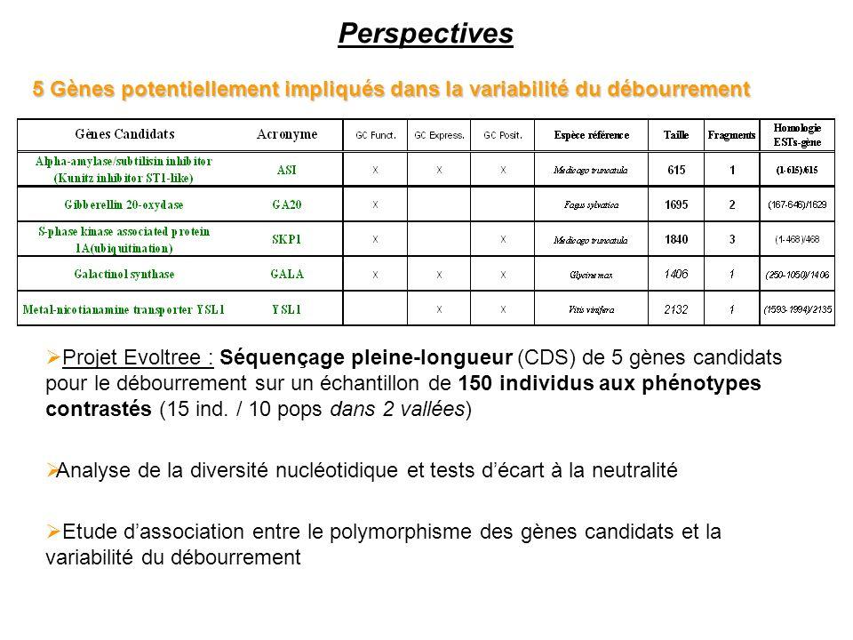 Perspectives 5 Gènes potentiellement impliqués dans la variabilité du débourrement Projet Evoltree : Séquençage pleine-longueur (CDS) de 5 gènes candi