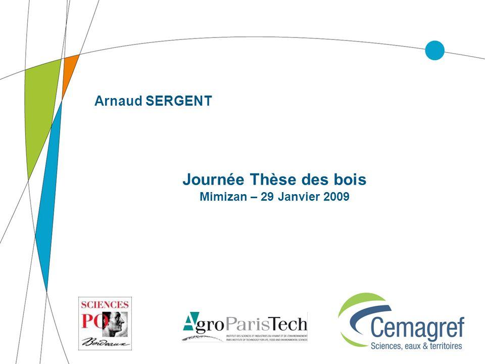 Arnaud SERGENT Journée Thèse des bois Mimizan – 29 Janvier 2009