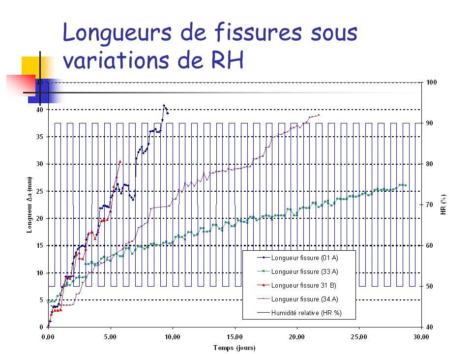 Longueurs de fissures sous variations de RH